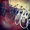 View Freetail Velo Services